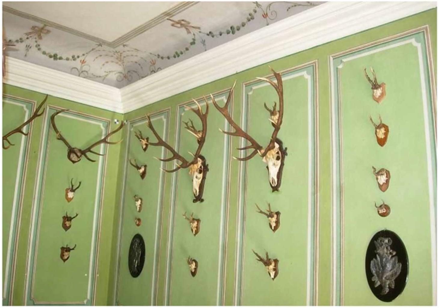 Коллекция трофеев благородного оленя и косули в старинной усадьбе-музее