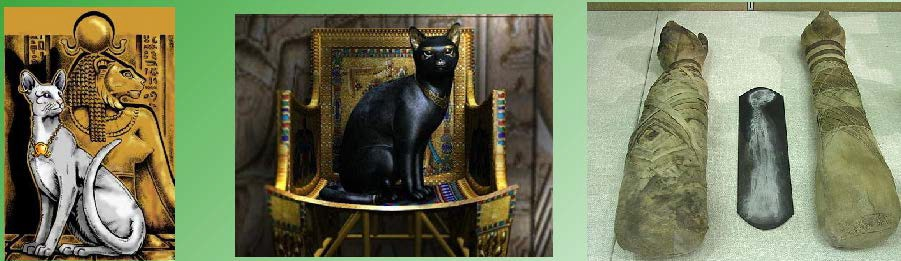 Памятники и гробница кошек в Египте