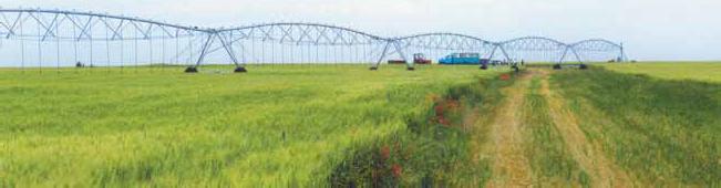 полив сельскохозяйственных угодий ДМФЕ «Фрегат»