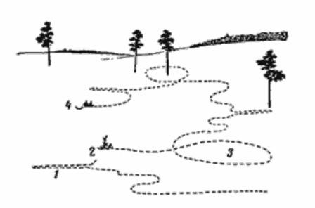 Путь зайца-русака на лежку