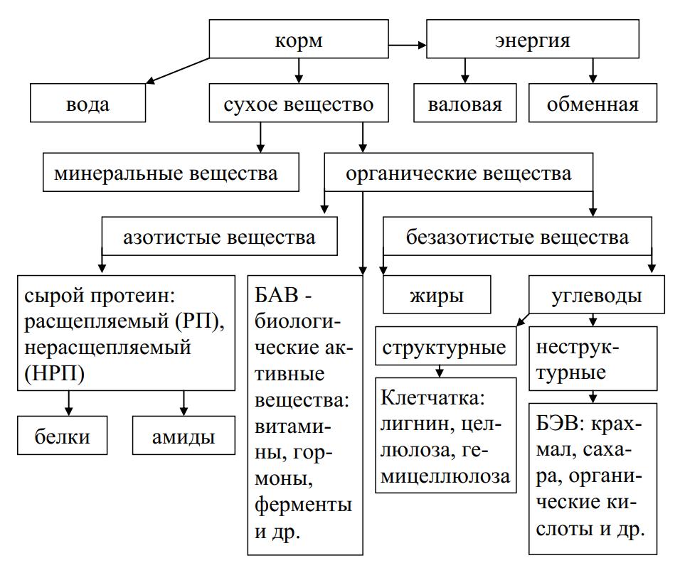 Схема химического (зоотехнического) анализа кормов