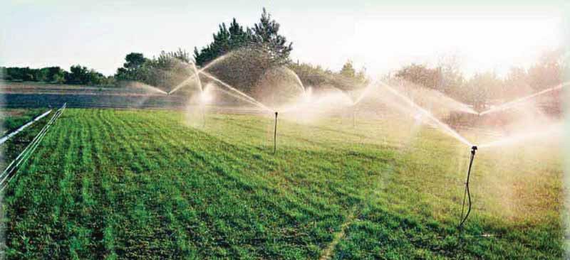 Вид участка «спринклерного орошения» сезонностационарной дождевальной системой