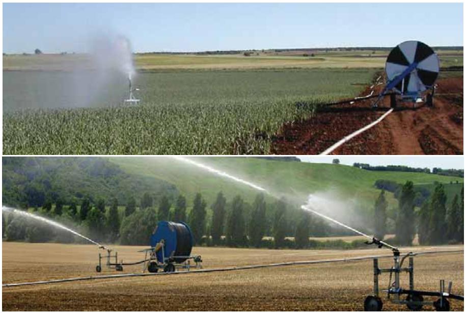 Виды сельскохозяйственных угодий, орошаемых шлангобарабанными дождевателями