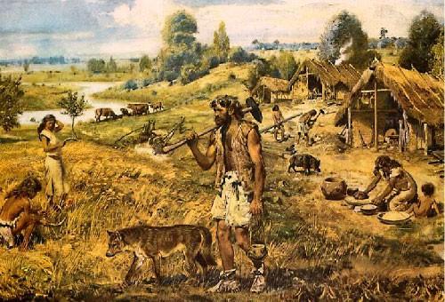 Волки – прямые предки домашних собак