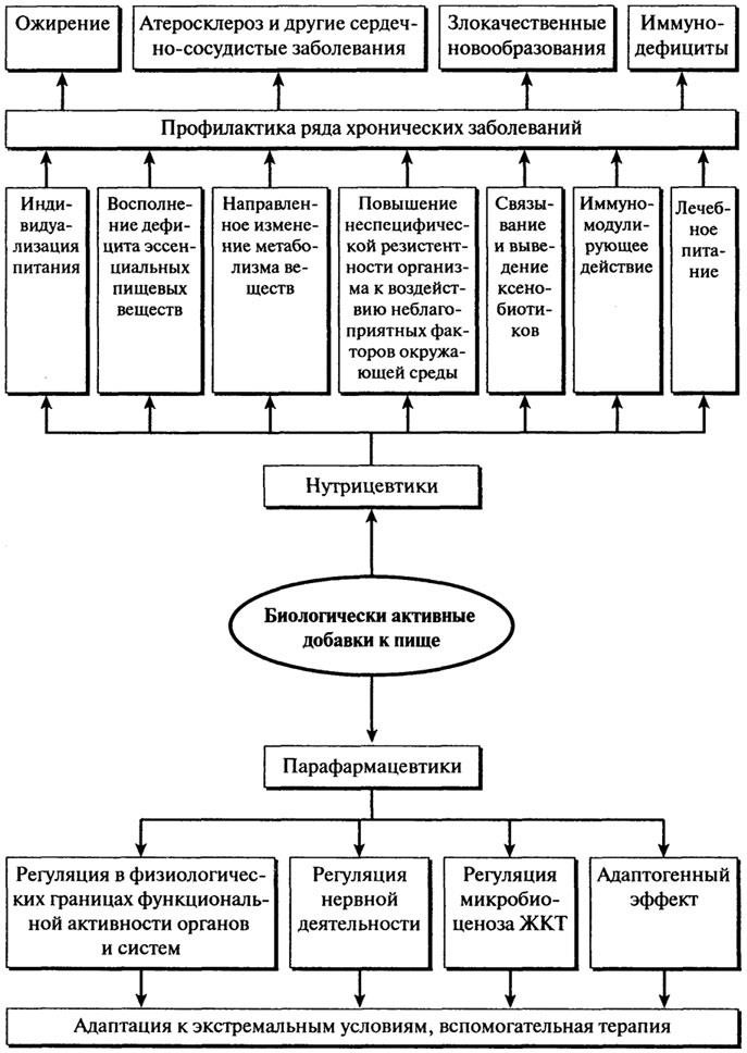 Функциональная роль БАД – нутрицевтиков и парафармацевтиков