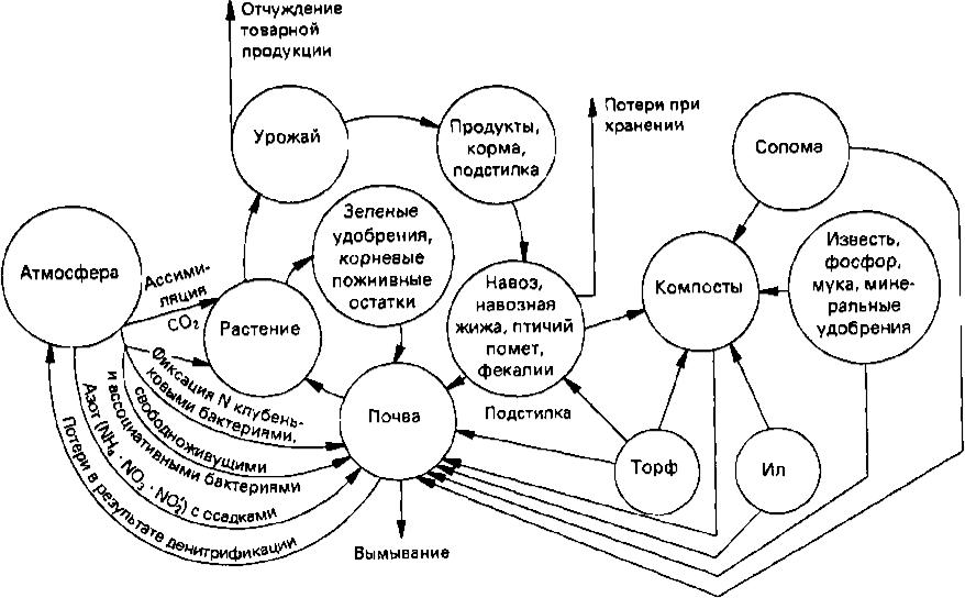 Круговорот и баланс питательных элементов в почве