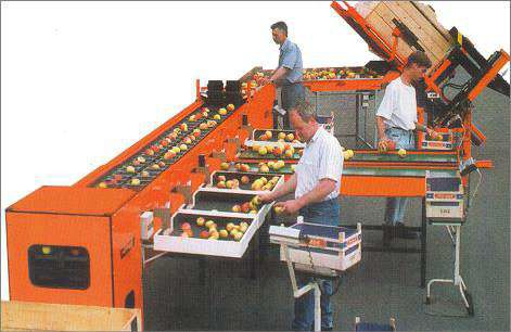 Механические весовые сортировочные машины «Perfekt»