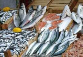 Определение размера и массы рыбы
