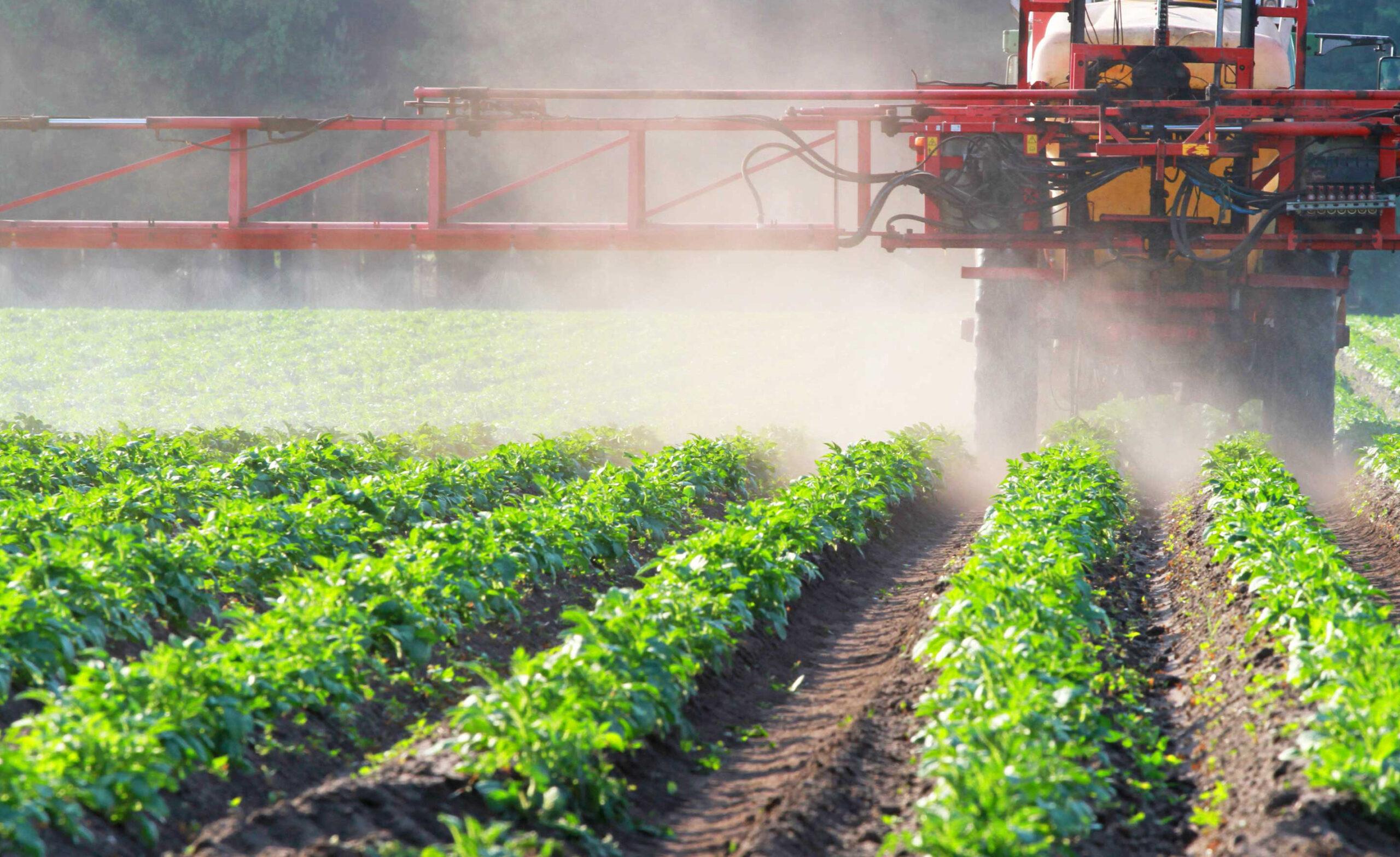 Пестициды. Классификация пестицидов для борьбы с вредителями