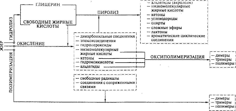 Схема процессов, происходящих при гидротермическом воздействии на жиры