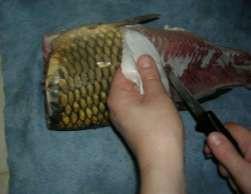 Снятие кожи с рыбы