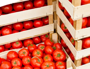 ящики с томатами