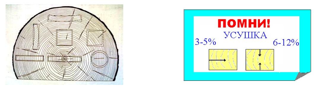 Деформации заготовок в зависимости от месторасположения по сечению пиловочника