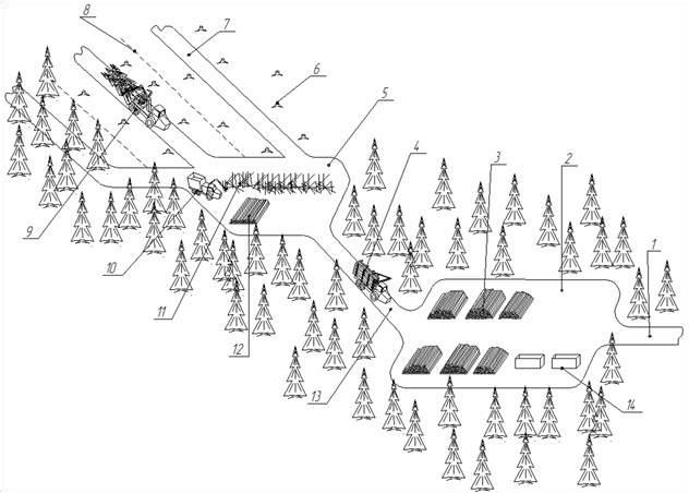 Схема разработки лесосеки комплексом машин ВТПМ + форвардер