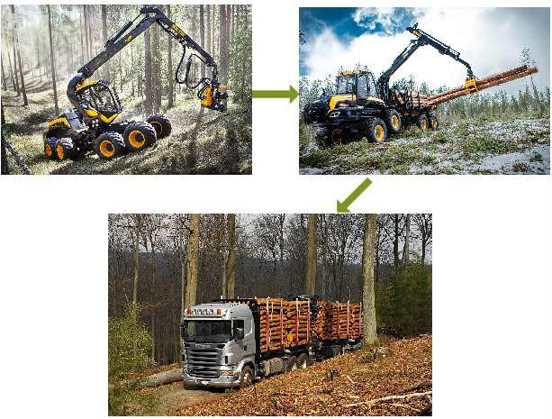 скандинавская технология заготовки древесины до поставки потребителю