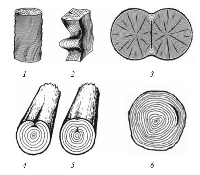 Пороки строения древесины