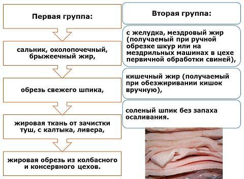Жир-сырец свиной