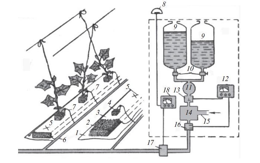 Выращивание овощных культур на гродане и минеральной вате