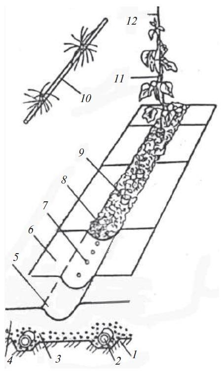 Выращивание растений на опилках