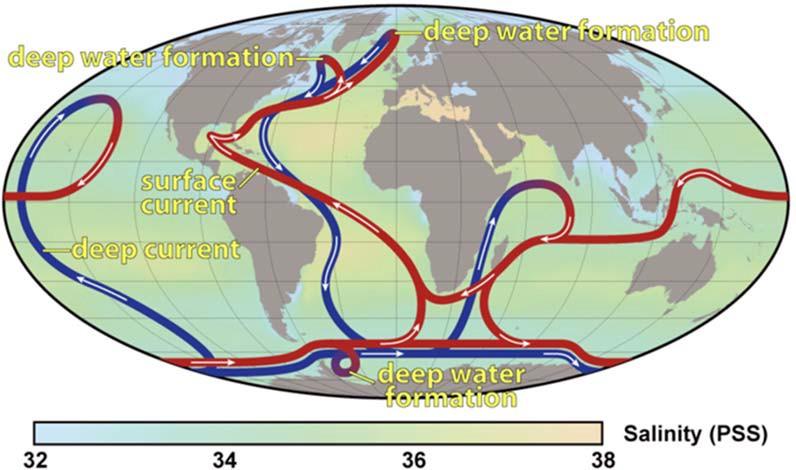Глобальное распределение тепловой энергии и солености воды океанов
