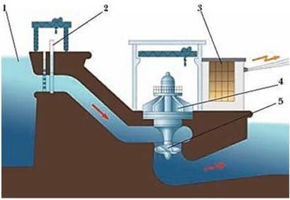 Схема расположения гидротурбины