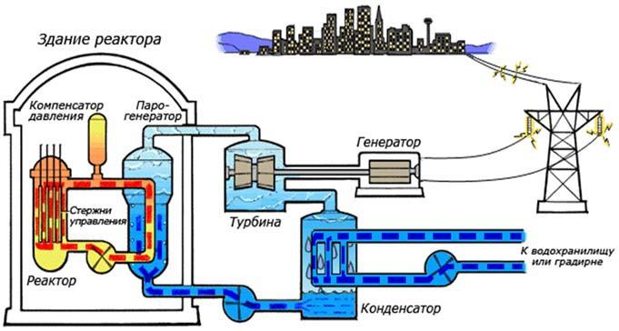 Схема реактора типа ВВЭР Белорусской АЭС