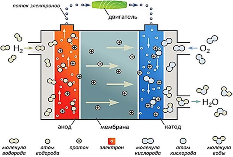 Схема топливного элемента (hydrogen fuel cell – водородный топливный элемент (ячейка)