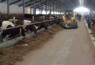 Техника для пододвигания и раздачи кормов