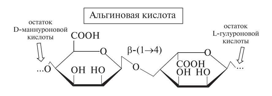 Альгиновые кислоты