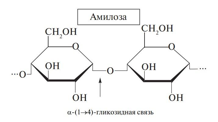 Амилоза