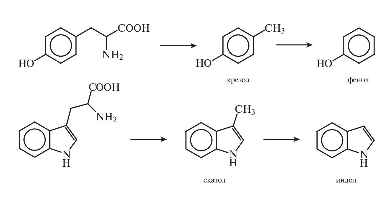 фенолсерная кислота