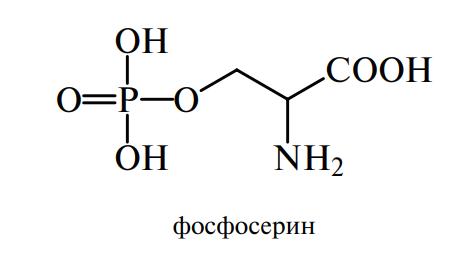 фосфосерин