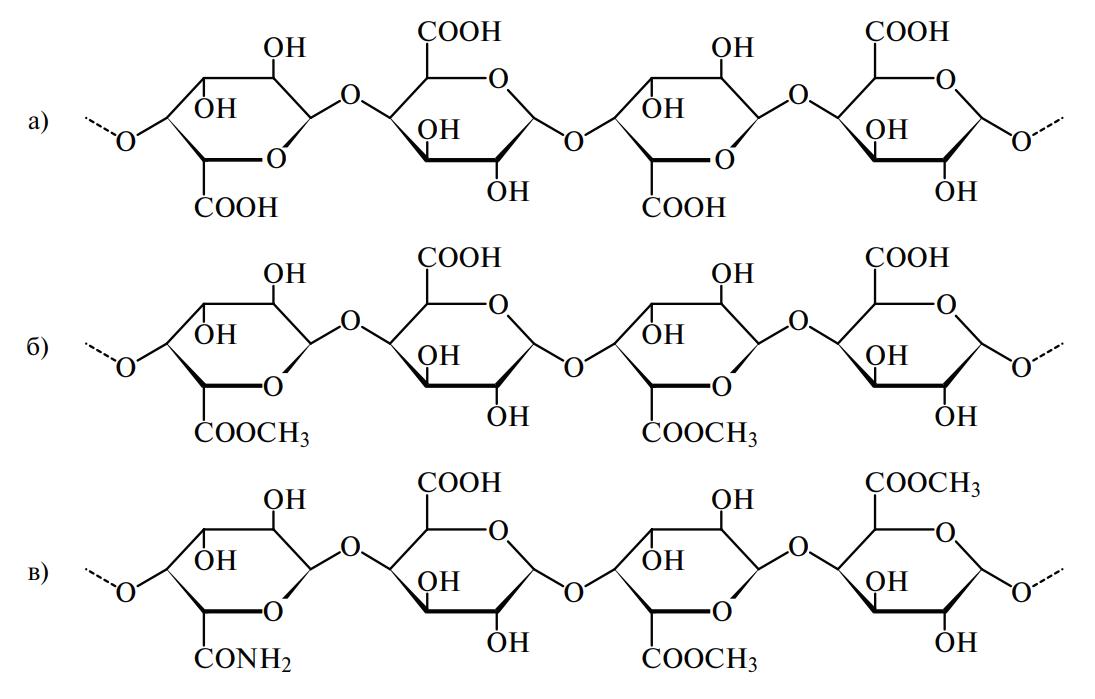 Фрагменты пектиновых молекул