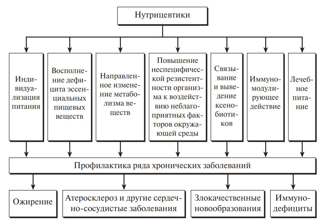 Функциональная роль нутрицевтиков
