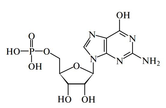 гуаниловая кислота