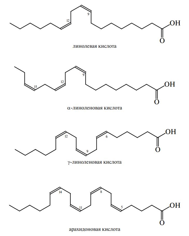 химический состав употребляемых жиров