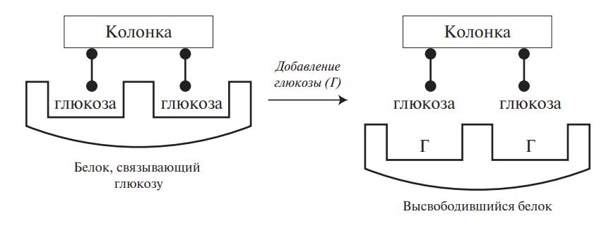Хроматография по сродству