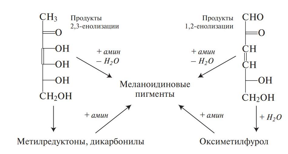 Образование меланоидиновых пигментов