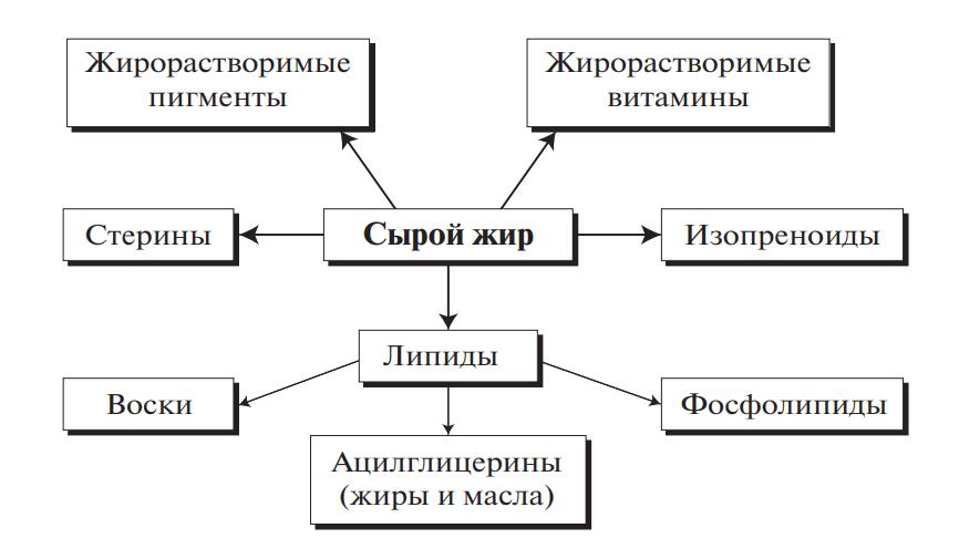 Основные компоненты сырого жира