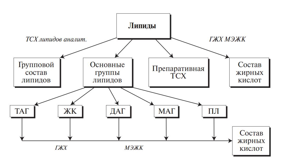 схема анализа жиров