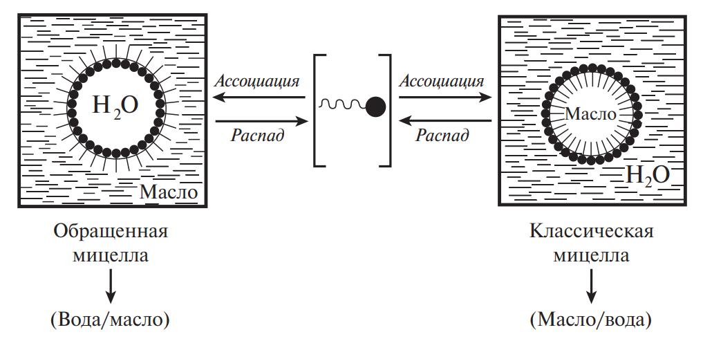 Схема образования мицелл