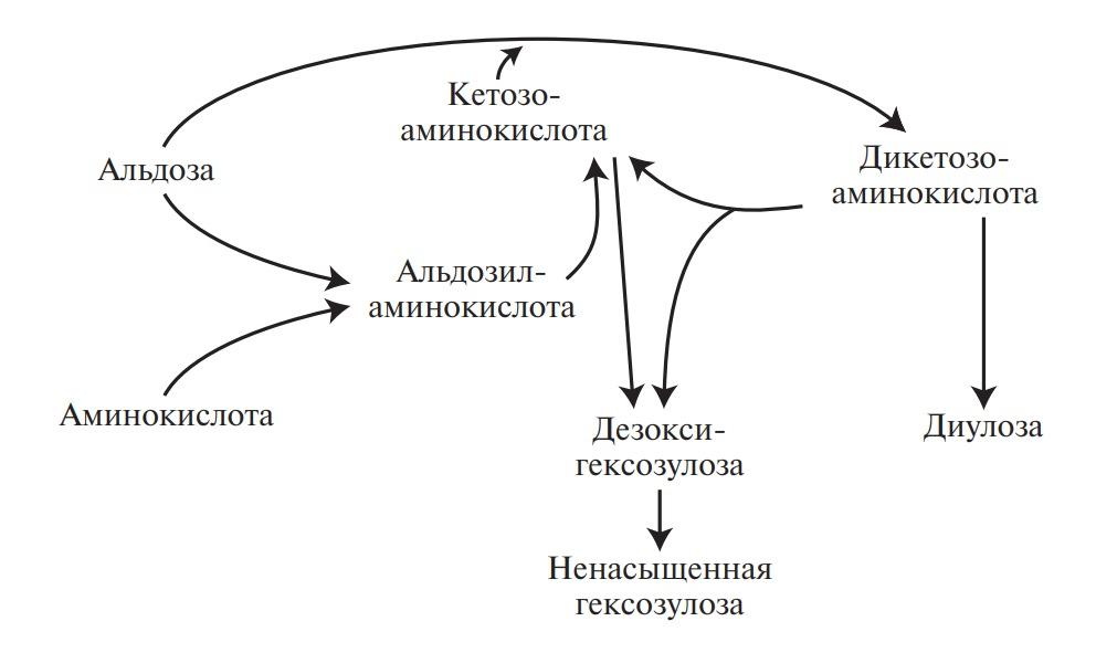 Схематическое изображение превращений при потемнении пищевых продуктов