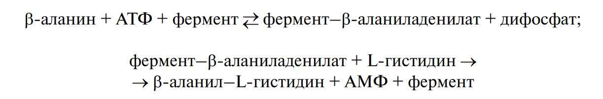 Синтез дипептидов-буферов