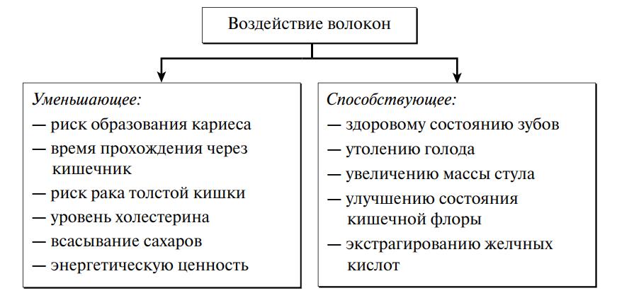 Специфические области физиологического воздействия волокон