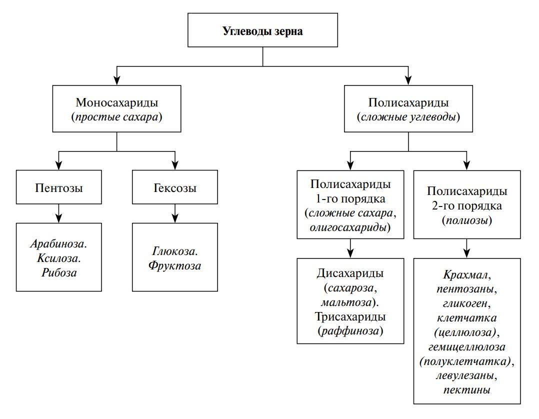 Классификация углеводов зерна