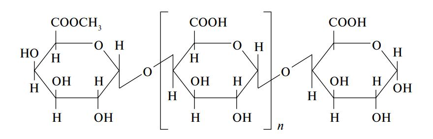 Схема строения молекулы пектина