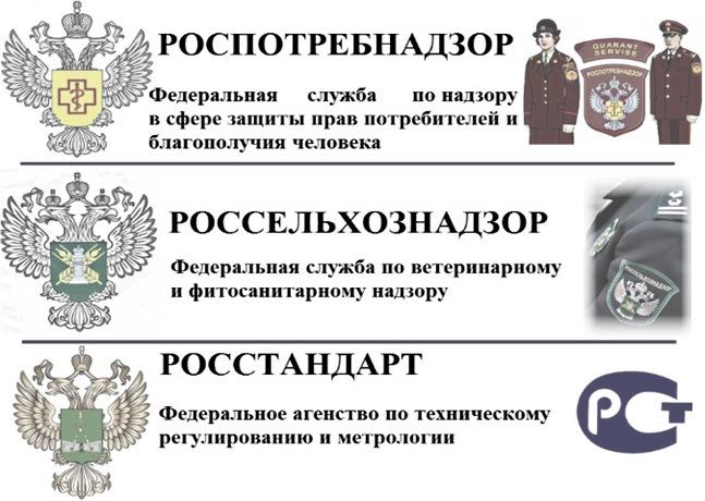 Службы, осуществляющий государственный надзор в Российской Федерации
