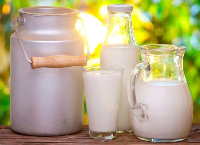 Суточный удой одной коровы может доходить до 32 л
