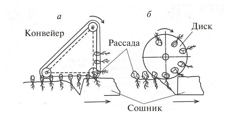 Рассадопосадочные аппараты конвейерного и дискового типов