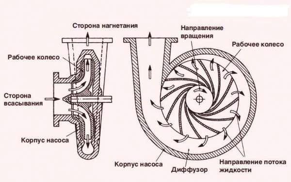 Вид центробежного насоса